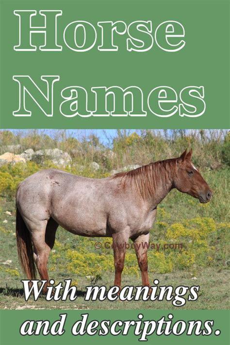 names horse famous long description