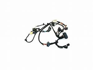 Front Door Wiring Harness Monsoon Driver 01 5