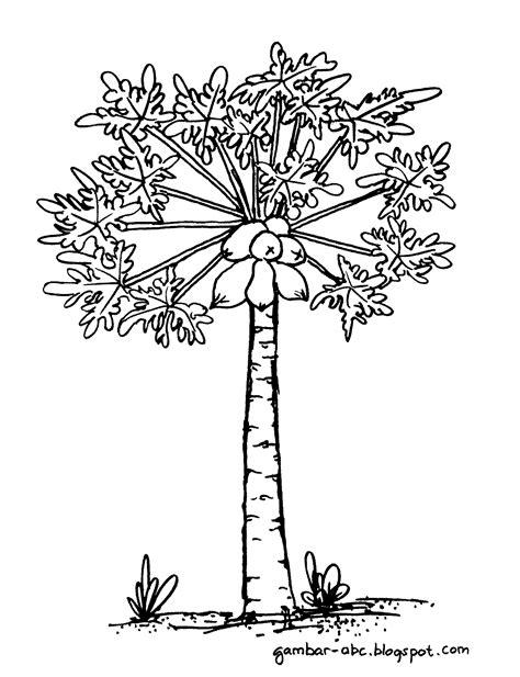 contoh gambar menggambar dan mewarnai pohon