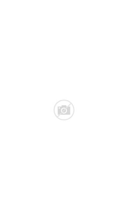 Clip Floral Watercolor Borders Purple Clipart Automne