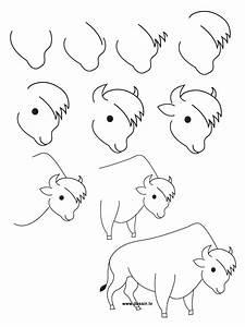 Dessin Jaguar Facile : comment dessiner un bison ~ Maxctalentgroup.com Avis de Voitures