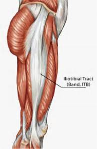 Iliotibial Band Syndrome - Denver Chiropractor & Physical Medicine ...  Spinal Stenosis Spinal Diseases