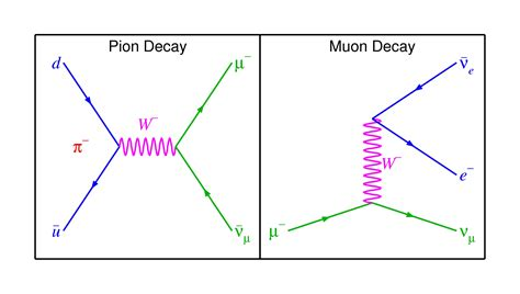Particle Physics  Experimental Evidence Of Two Neutrinos. Computer Science Entry Level Resume. Senior Net Developer Resume Sample. Sample Insurance Underwriter Resume. Good Things To Say On Your Resume. Civil Engineer Resume Format Free Download. Sales Resume Example. Resume Interests Section Examples. Hr Description For Resume