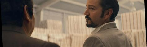Narcos: Mexico season 2 finally gets premiere date: Diego ...