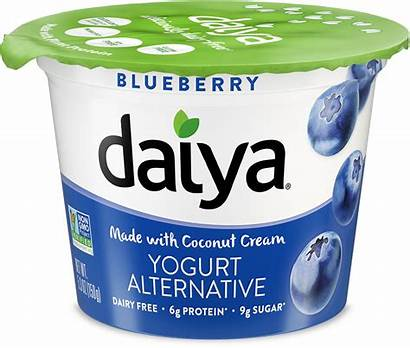 Yogurt Daiya Alternative Blueberry Greek Gluten Cherry