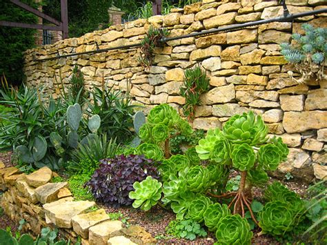 tuscan garden plants home improvement decorating remodeling and home garden made easy raftertales com