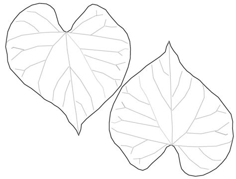 heart shaped leaves clipart   cliparts