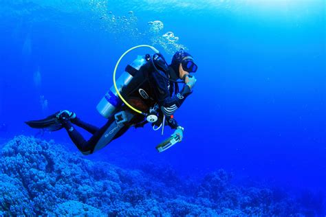 scuba diving wallpaper 59