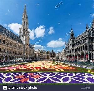 Teppich Auf Englisch : 2016 teppich von blumen auf der grand place grote markt ~ Watch28wear.com Haus und Dekorationen