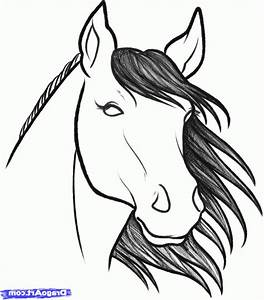 Easy To Draw Horse Head How To Draw A Horse Head, Stepstep ...