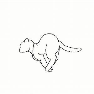 Delicadezas da Alma ♡: Gifs de Gatinhos Fofinhos ღ