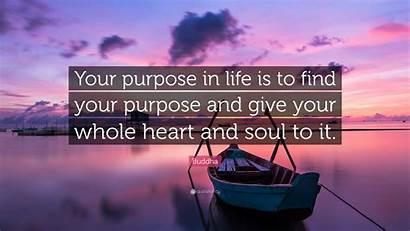 Purpose Give Heart Soul Quote Whole Buddha