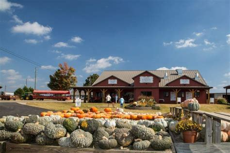 Best Pumpkin Patch Birmingham Al by These 10 Charming Pumpkin Patches In Alabama Are Picture