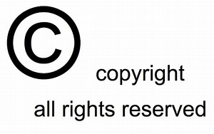 Image result for rights reserved symbol