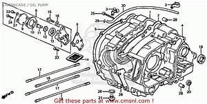 Honda Atc110 1984  E  Usa Crankcase    Oil Pump