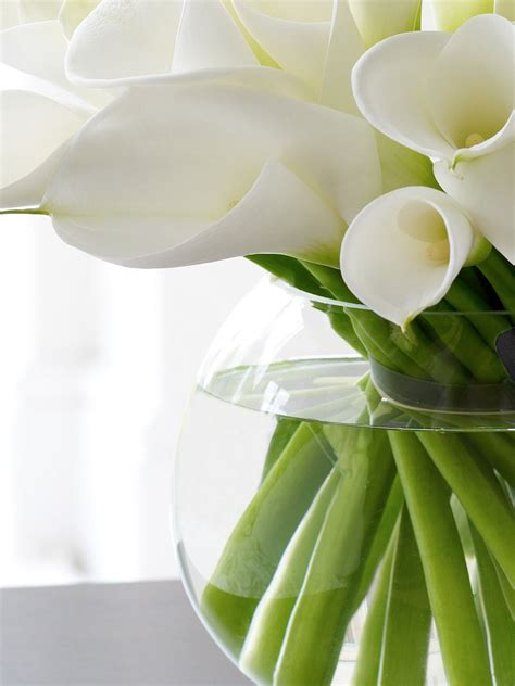 white calla flower luxury white calla lily globe