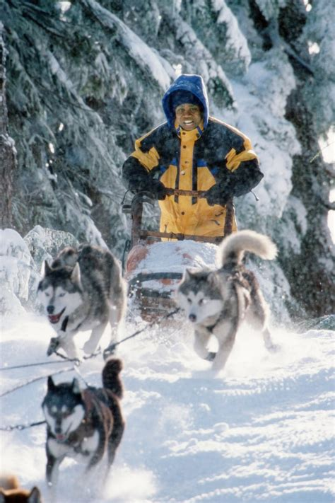 snow dogs winter movies  kids popsugar moms photo