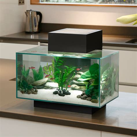 aquarium accessories biorb aquarium accessories aquarium set up for sale 2017