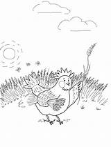 Hen Coloring Wheat Pages Gathering Printable Puppets sketch template