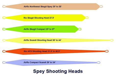 Sink Tip Fly Line Setup by Related Keywords Suggestions For Spey Line
