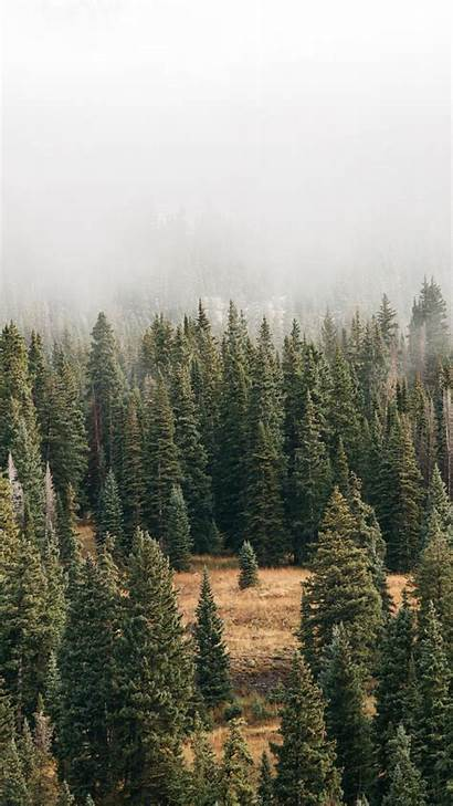 Iphone Wallpapers Nature Preppy Might Xr Summer