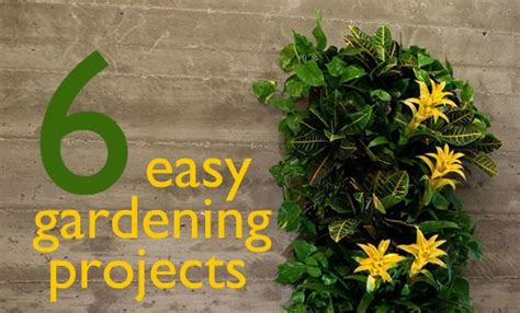 6 easy gardening projects to do this weekend 6 easy