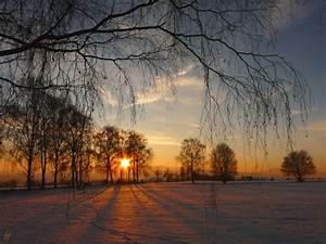 Sonne Im Winter : der kr nende abschluss natur view fotocommunity ~ Lizthompson.info Haus und Dekorationen
