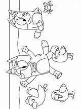 Bluey Beach Coloring Pages Fun sketch template