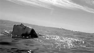 Giorgio Armani Acqua Di Gio TV Spot, Feat. Lars Burmeist ...