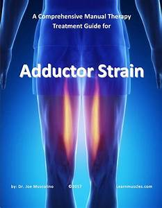 A Comprehensive Treatment Guide For Adductor Strain
