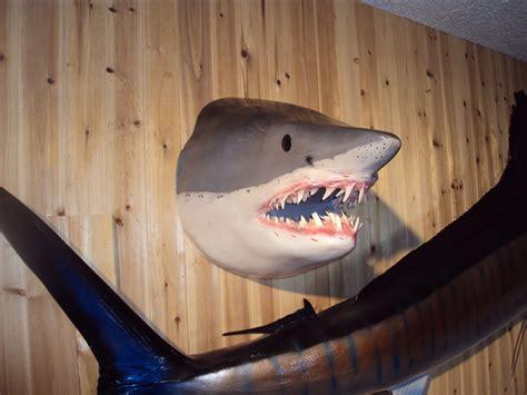 mako shark headmount mount  sided wall mount fish