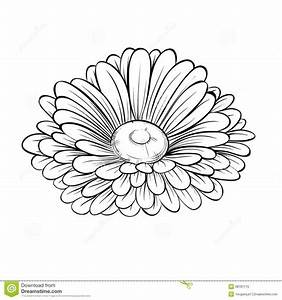 realistic flower outlines - Google Search | Arm Tattoo ...