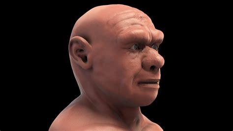 homo neanderthalensis  forensic facial reconstruction