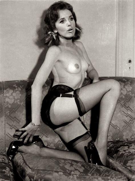 Dawn Wells Nude Porn
