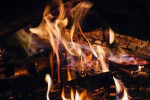 Free Images : wood, flame, fire, fireplace, campfire, meat ...