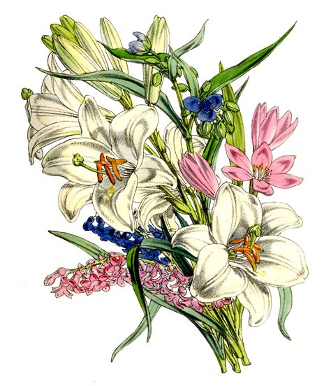 instant art printable lovely lovely lily bouquet