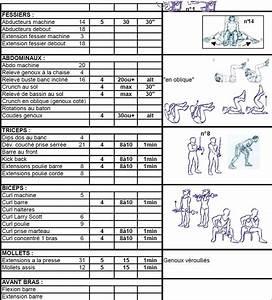Programme Musculation Femme Maison. programme musculation seche ... 8b66719fe86