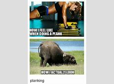 What I I Plank I Look Planking When Look And What Actually 10