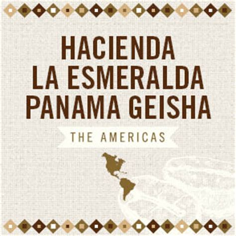 This geisha was part of the 2020 hacienda la esmeralda private collection. Hacienda La Esmeralda Panama Geisha   Caroline's Coffee
