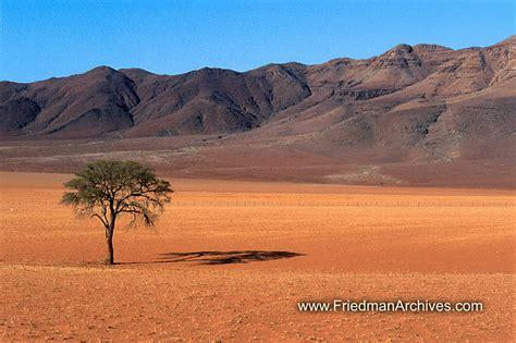 desert landscap desert landscape quotes quotesgram