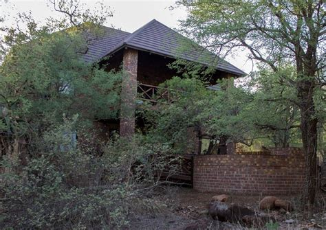 self catering cottage ex deo soenie self catering cottage marloth park south