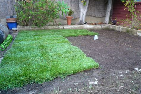 how to put in a new lawn how to lay sod grass in time for spring