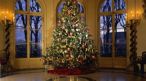 Luxuriant Christmas Tree 1600x900 Wallpaper