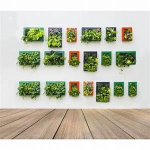 creer un mur vegetal en interieur With deco autour d une piscine 13 creer un mur vegetal en interieur