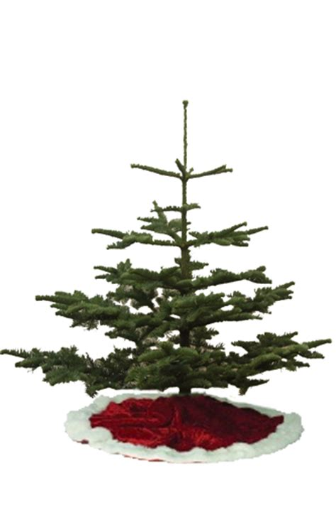 types  christmas tree lights images