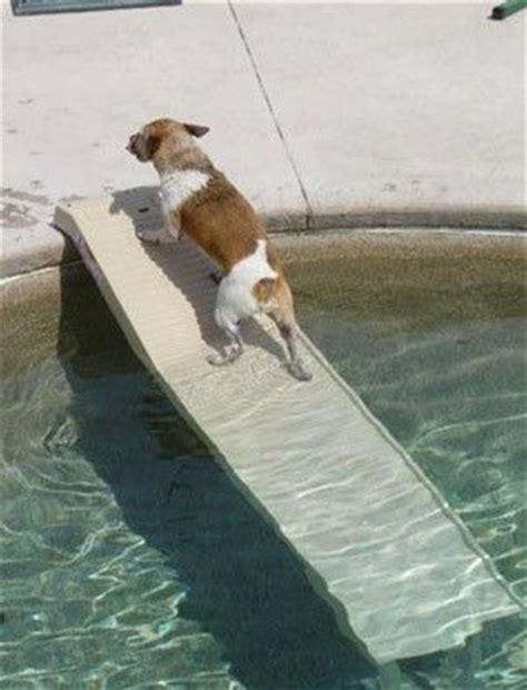 pet step   safe  slip ramp   dog