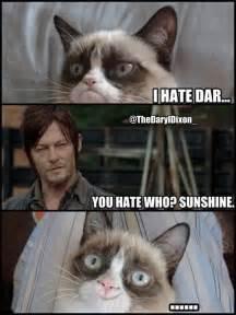 grumpy cat dead daryl dixon memes daryl dixon memes