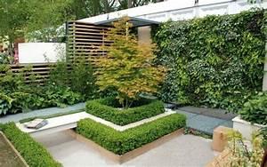 Best Piante Da Terrazzo Sempreverdi Images Modern Home Design ...