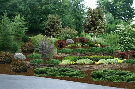 terracing  hillside  garden steep landscaping ideas