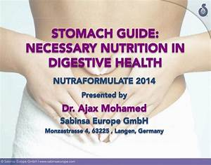 Stomach Guide  Necessary Nutrition In Digestive Health
